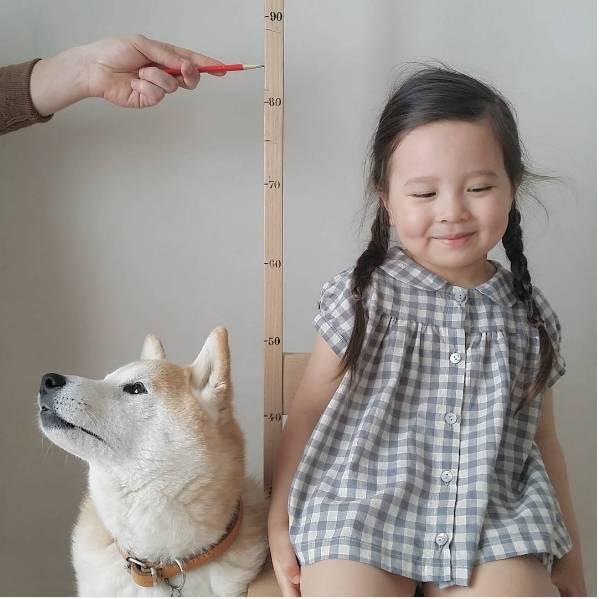 这个3岁女孩和汪星人,突然就这样暖遍全球!-金融微周刊